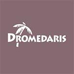 Dromedaris